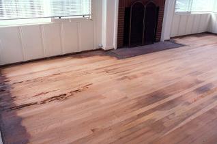 Laguna Beach Urine Stains Termite Damage Oak Hardwood Floor Repair Image 1